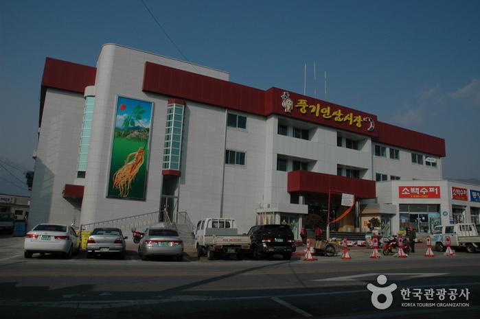 Punggi Ginseng Market (풍기인삼시장)