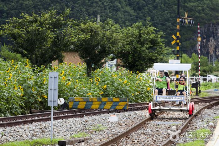 Le vélo-rail de Jeongseon (정선레일바이크)