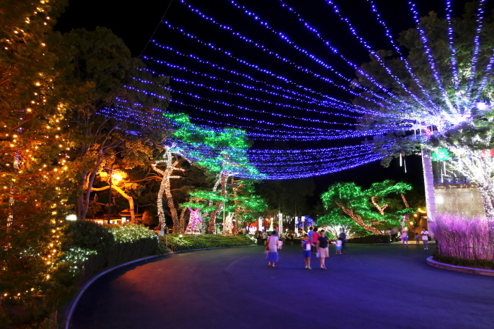호수별빛축제 사진