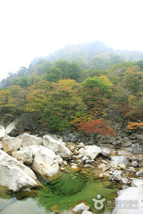 Biseondae Rocks (비선대)