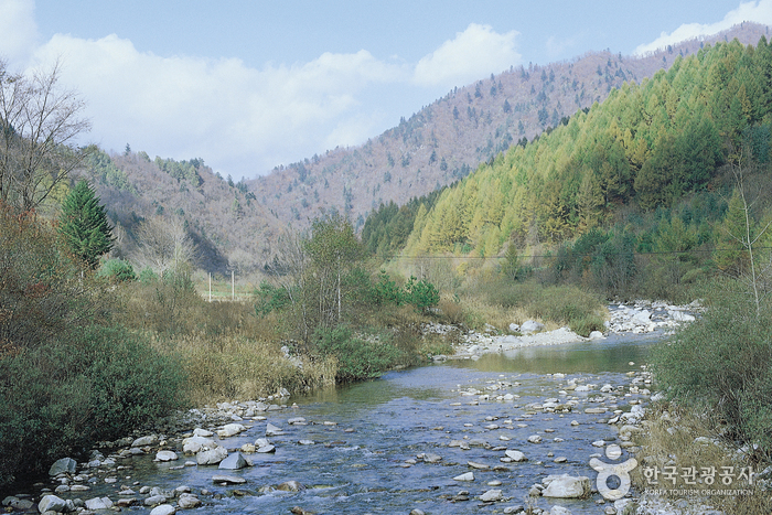 Odaesan National Park (오대산국립공원)