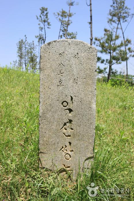 Iksan Ssangneung (익산 쌍릉)