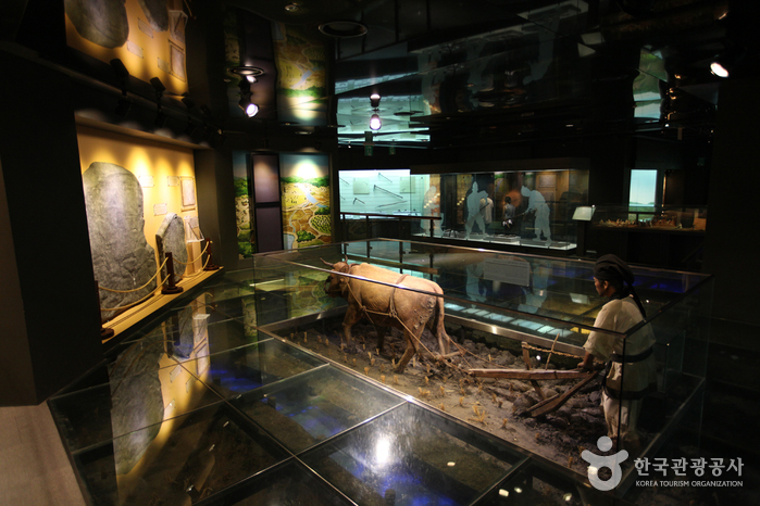 Agricultural Museum (농업박물관)