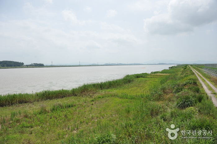 Yeongsangang River (영산강)