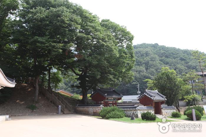 Jangneung Royal Tomb [UNESCO World Heritage] (영월 장릉 [유네스코 세계문화유산])