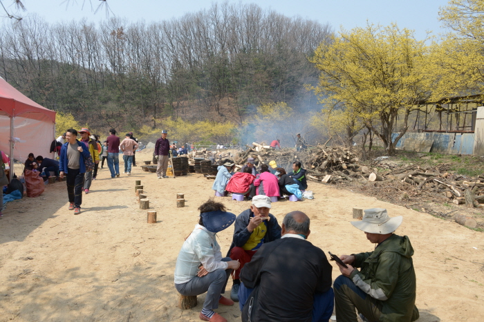 Festival de las Flores de Sansuyu y la Vaca Hanu de Yangpyeong (양평 산수유한우축제)