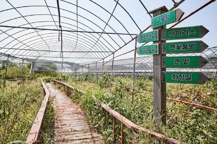 실미원농장 사진2