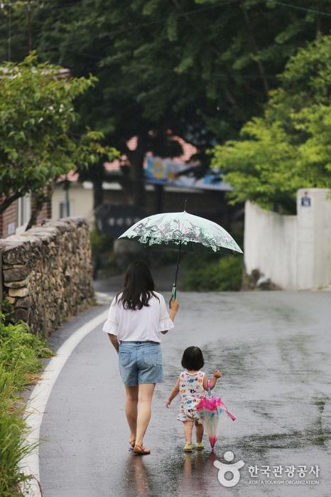 비가 오는 남해