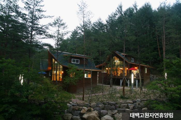 太白高原自然休養林<br>(태백고원자연휴양림)