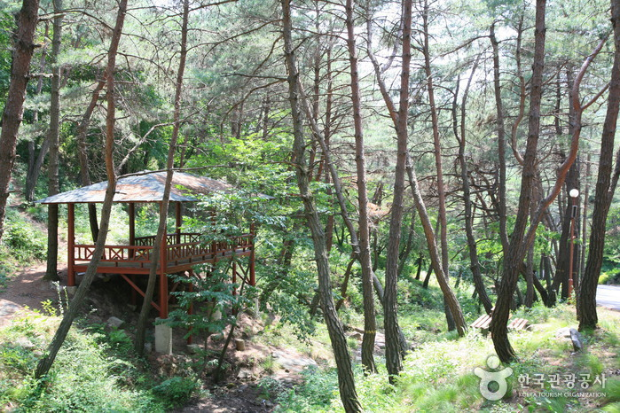 Namwon Recreational Forest (Namwon Resort) (남원자연휴양림)