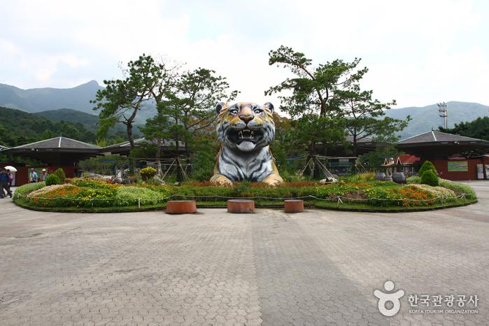 Grand Parc de Séoul (Séouldaegongwon) (서울대공원)