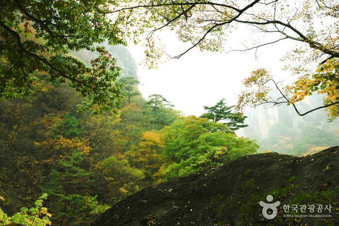 Seoraksan National Park (Namseorak) (설악산국립공원- 남설악)