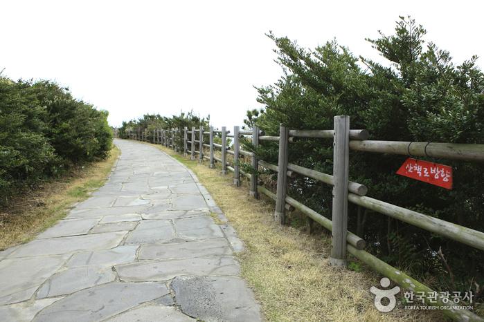 Namwon Keuneong Promenade (남원 큰엉해안)