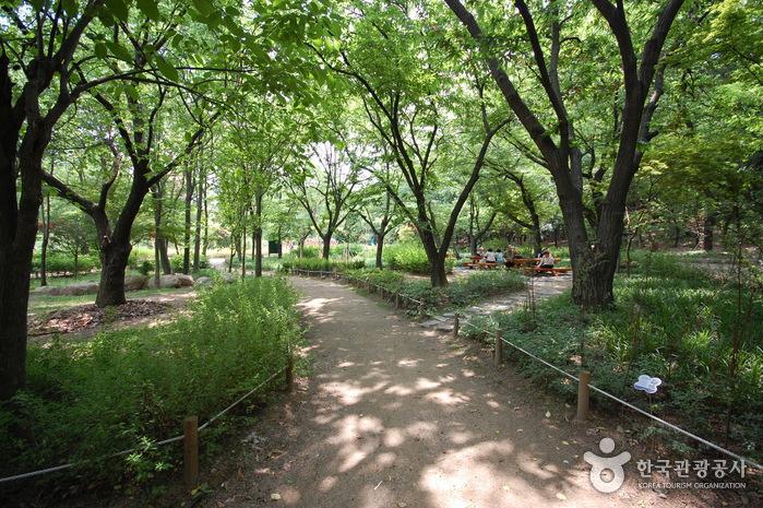 관악산공원 야외식물원