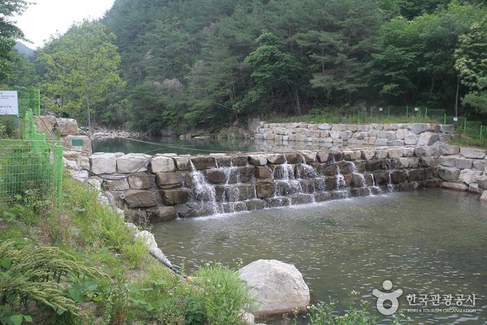 Tal Seonyudong (Sancheong) (선유동계곡(산청))