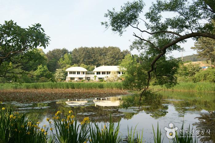 千里浦樹木園(천리포수목원)
