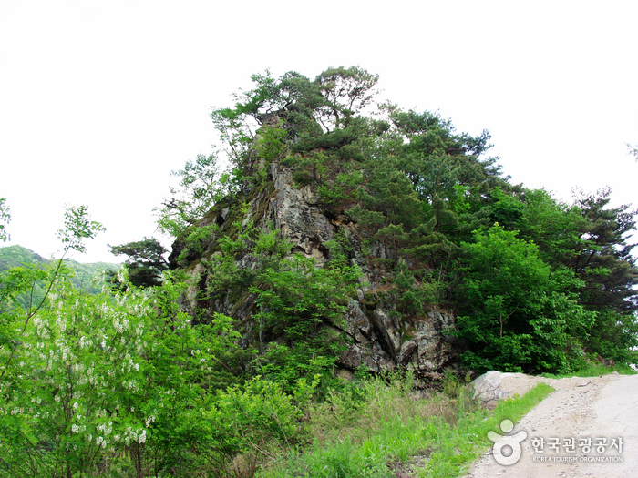 Ddansan Mountain (딴산)