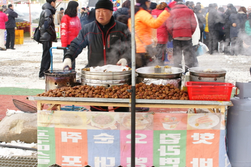 Yeongwol Donggang Winter Festival (영월동강 겨울축제)