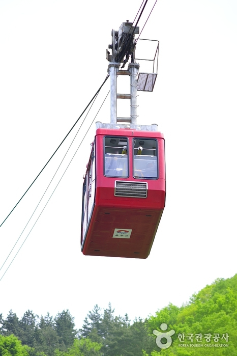 Dokdo Island Observatory Cable Car (독도전망대 케이블카)