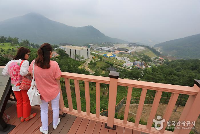 Тематическая деревня Тонипогамчхон (Тематический парк восточной медицины Санчхон) (동의보감촌 (산청한방테마파크))9