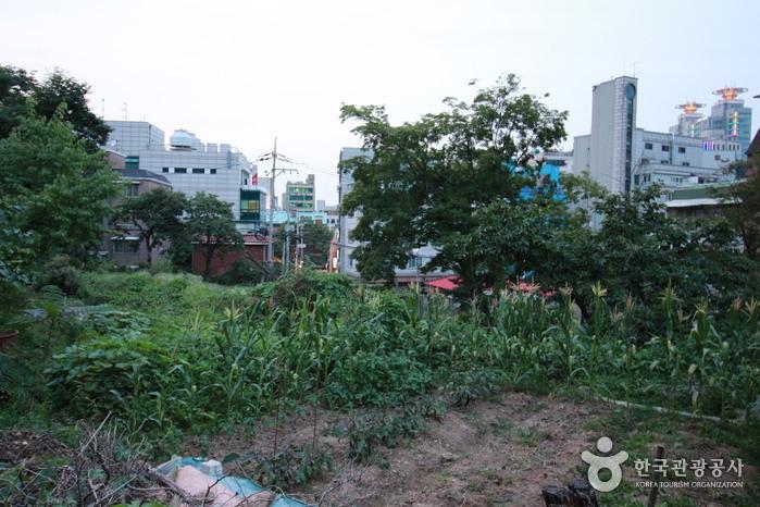 서울 남현동 요지