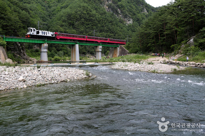 Baekdudaegan Mountain Range Canyon Train (V-Train) (백두대간협곡열차 (V-트레인))