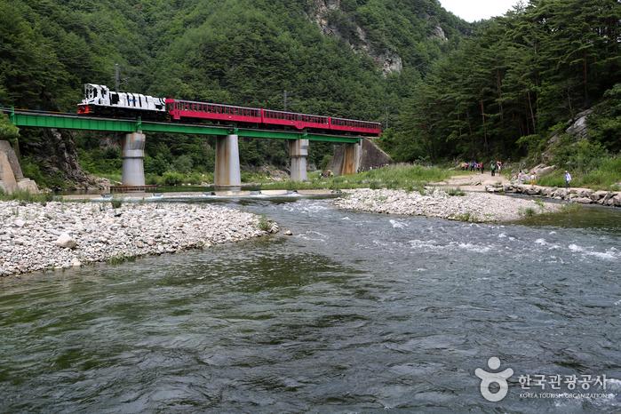 白头大干峡谷列车(V-TRAIN)백두대간협곡열차(V-트레인)