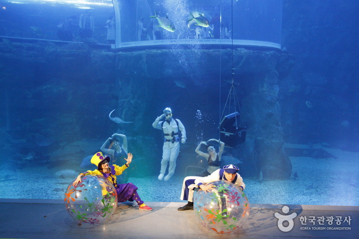 Hanhwa Aqua Planet Yeosu (아쿠아플라넷 여수)
