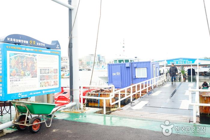 Bateau-mouche de Seogwipo (서귀포유람선)