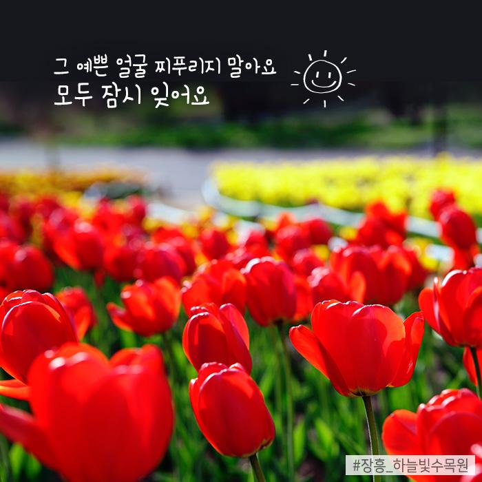 그 예쁜 얼굴 찌푸리지 말아요 모두 잠시 잊어요 #장흥_하늘빛수목원