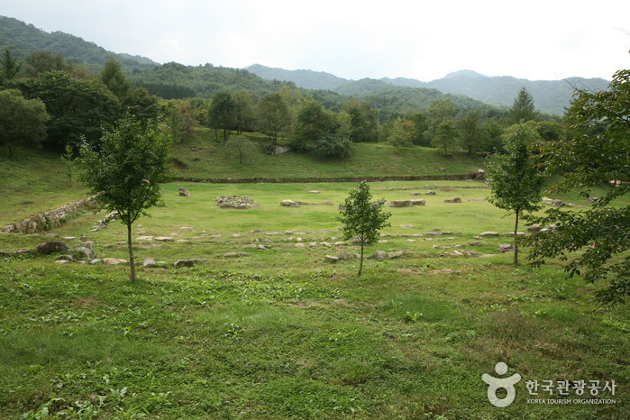 Jungwon Mireungni Temple Site (중원미륵리사지)