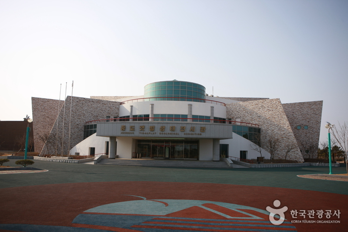 Sinan Mudflat Center (Former Jeungdo Mudflat Eco Exhibition Hall) (신안 갯벌센터/슬로시티센터 (구, 증도 갯벌생태전시관))