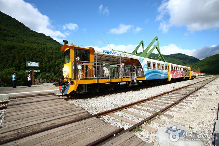 Jeongseon Auraji Rail Bike (정선 아우라지 레일바이크)