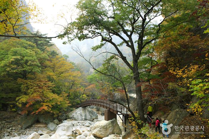 雪岳山国立公园(南雪岳)설악산국립공원(남설악)