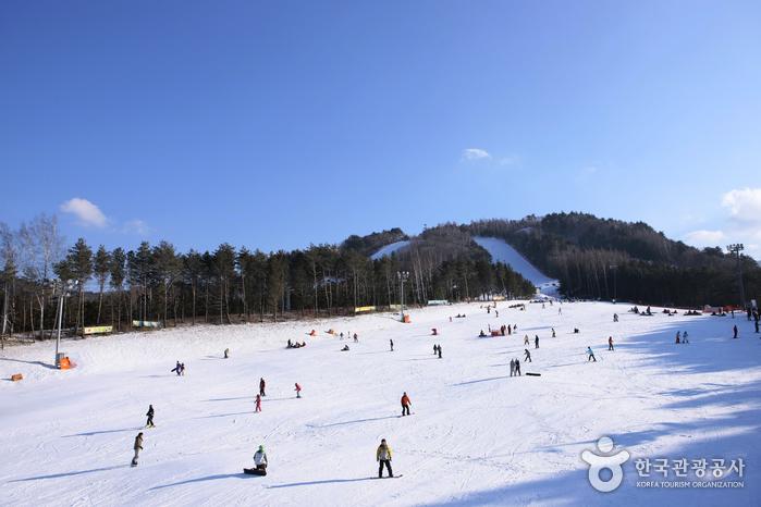 龙平度假村(용평리조트)