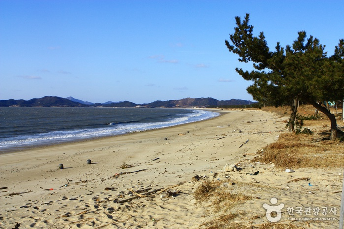 Jeungdo Island [A Slow City](증도)
