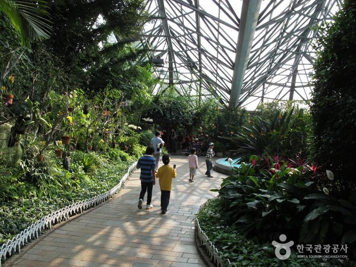 Yeomiji Botanical Garden (여미지 식물원)