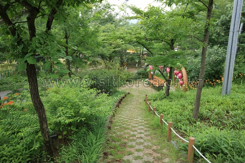 Gayasan Wildflower Botanical Garden (가야산 야생화식물원)