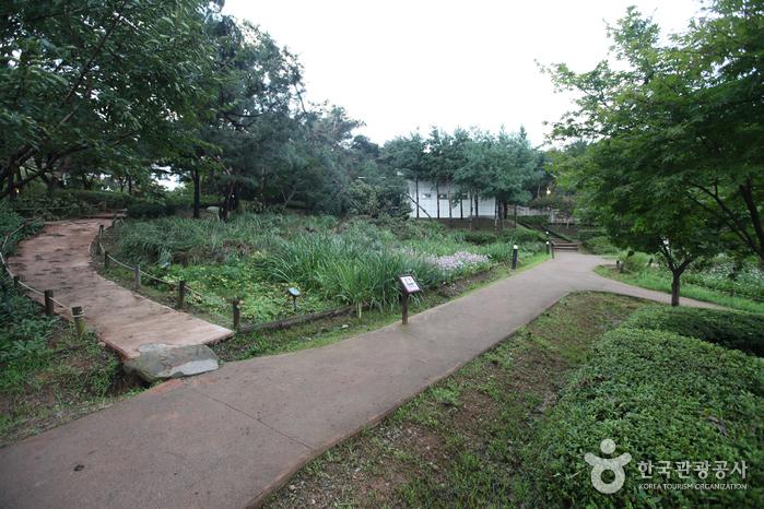 Экологический парк в горах Ачхасан (아차산생태공원)10