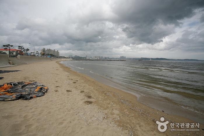 송도해변(포항)