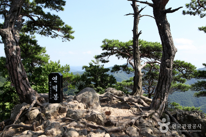 Провинциальный парк гор Чхоннянсан (청량산도립공원)