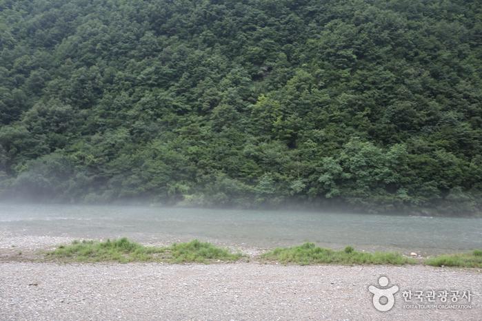 김삿갓 계곡