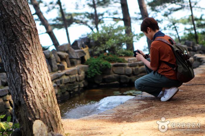 연못사진을 찍고있는 사람