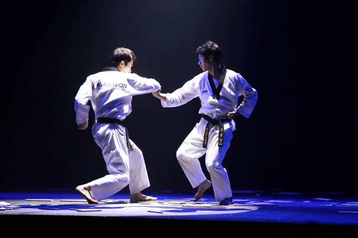 The World Taekwondo Hanmadang (세계 태권도 한마당)