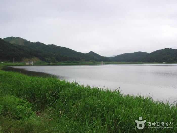 Озеро Хвачжинпхо (화진포)12