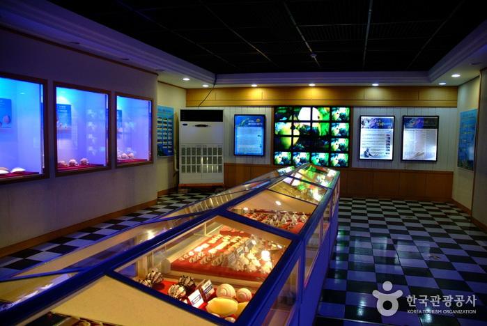 Marinemuseum Hwajinpo (화진포 해양박물관)
