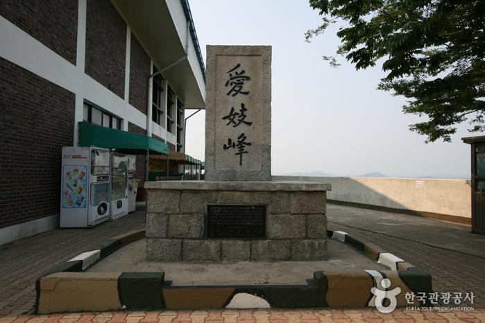 통일을 꿈꾸는 김포 문화역사 탐방