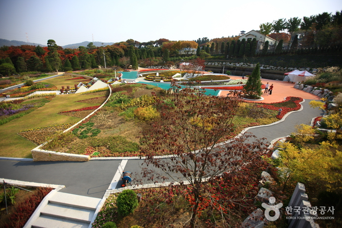 Beartree公園(베어트리파크)