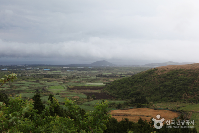 Darangshi Oreum (Pic Wollang) (다랑쉬오름 - 월랑봉)