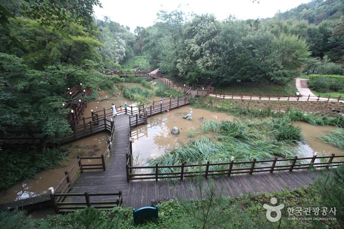 Экологический парк в горах Ачхасан (아차산생태공원)9